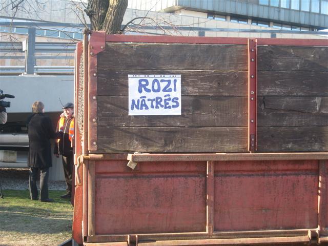 Rozi nātrēs