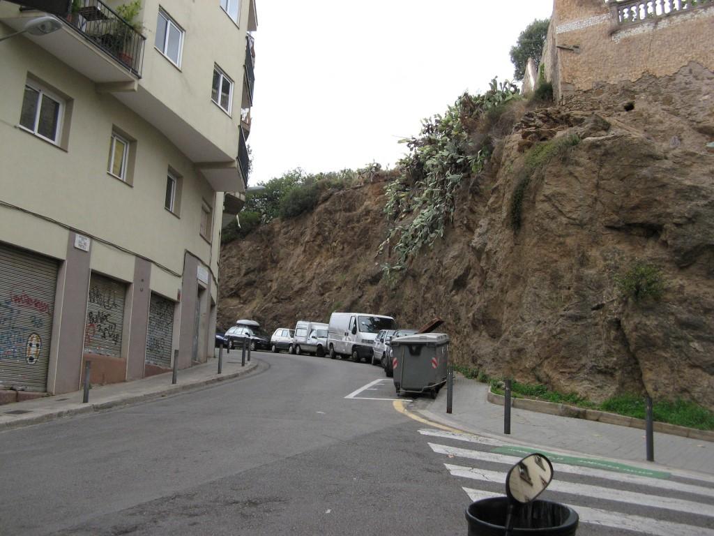 Iela kalna vidū ar vietējo veģetāciju